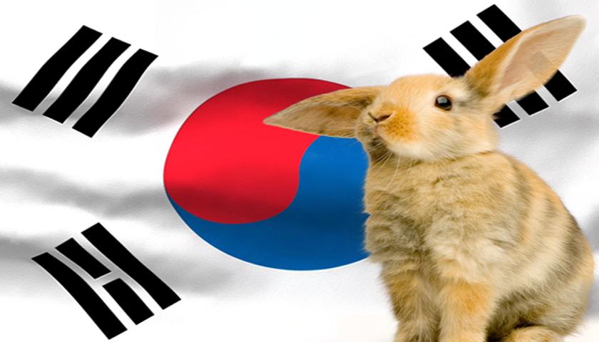 Cosmetica-Coreana-SugoiHunter6