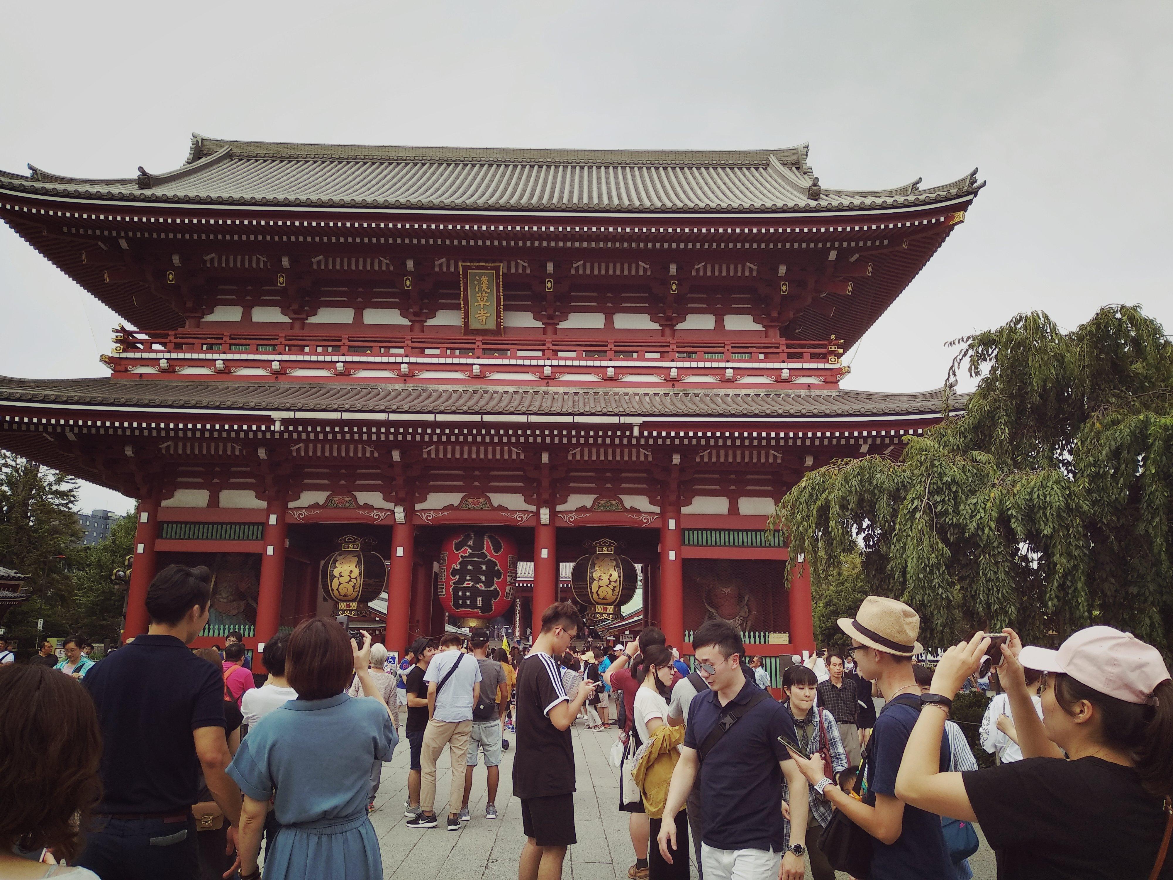¿POR QUÉ VIAJAR A JAPÓN ESTÁ TAN DE MODA?